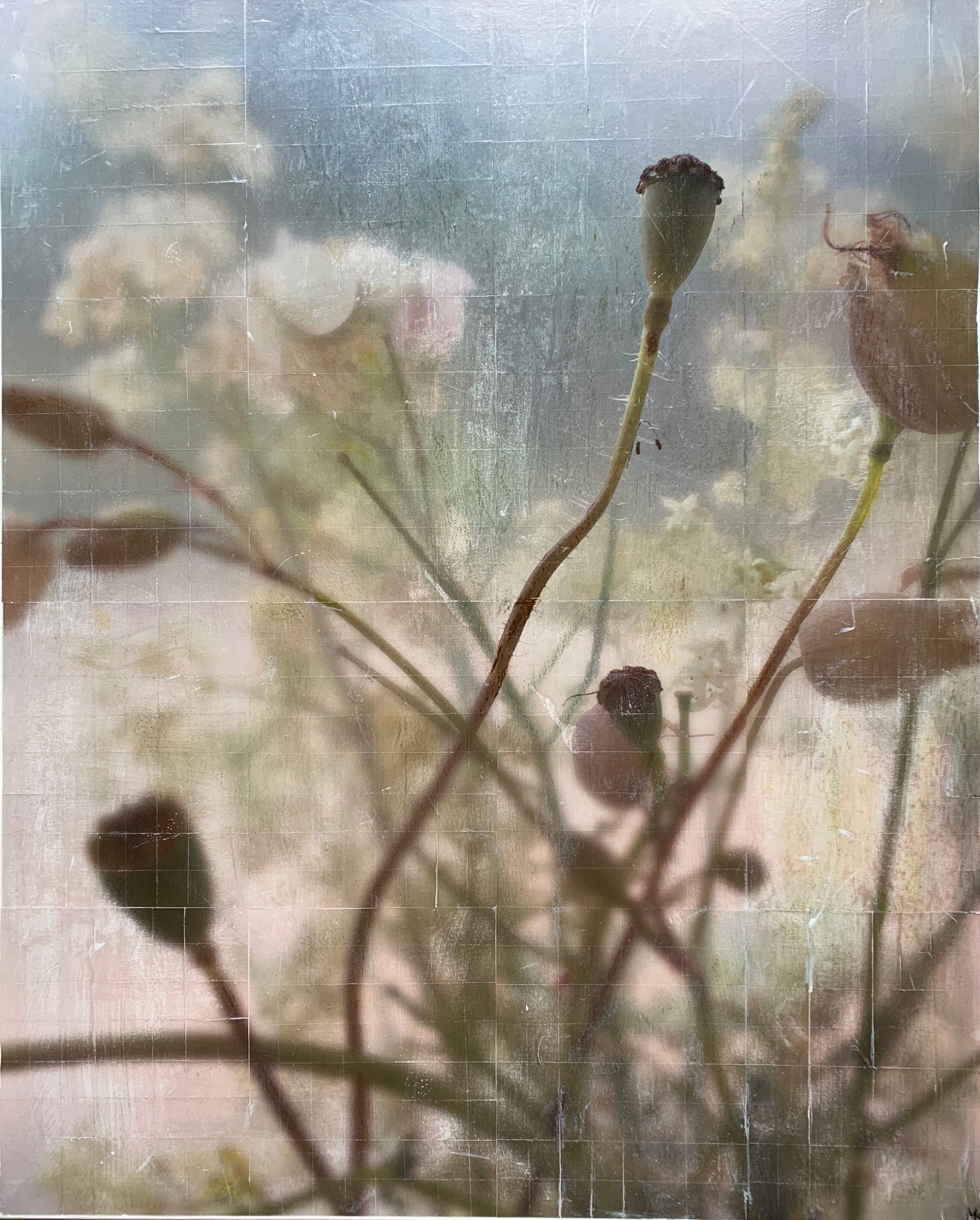 Poppy 2_80x100cm (Collage)