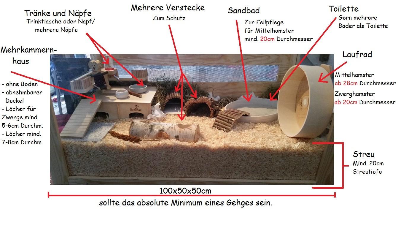 Artgerechte Hamsterhaltung   Hamsterbacken.com