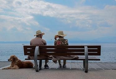 Hund und Mensch partner fürs leben