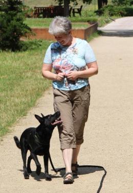 Entspannung, Hund, Aktivität