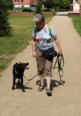 Aktiv trotz Spondylose dank Hundephysiotherapie