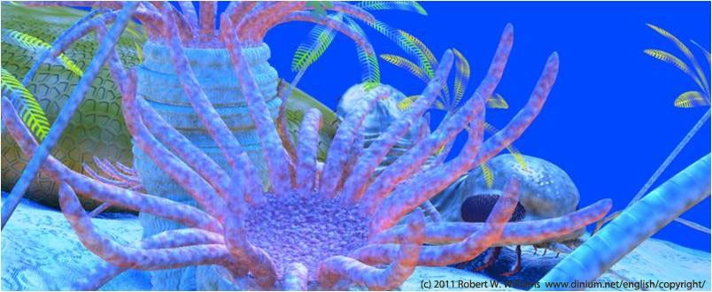 Rugose coral on a Silurian reef, 430 million years ago.