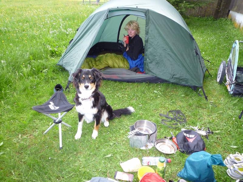 Zelten mit dem Hund