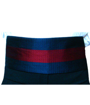 Kummerbund in Clubfarben von Joint Colours