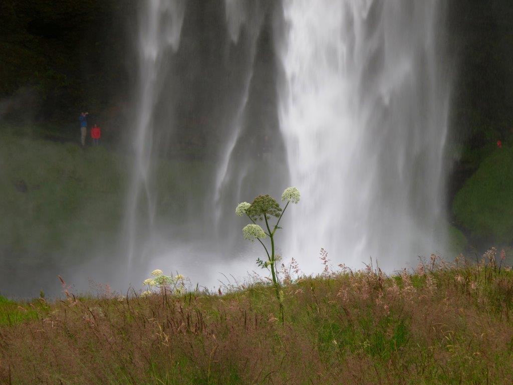 """""""Wasserfall"""" von Dr. Andrea Euler"""