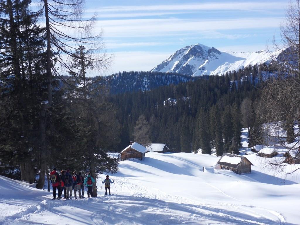 Am Retourweg ging es über die Hohe Schartenalm 1.550 m