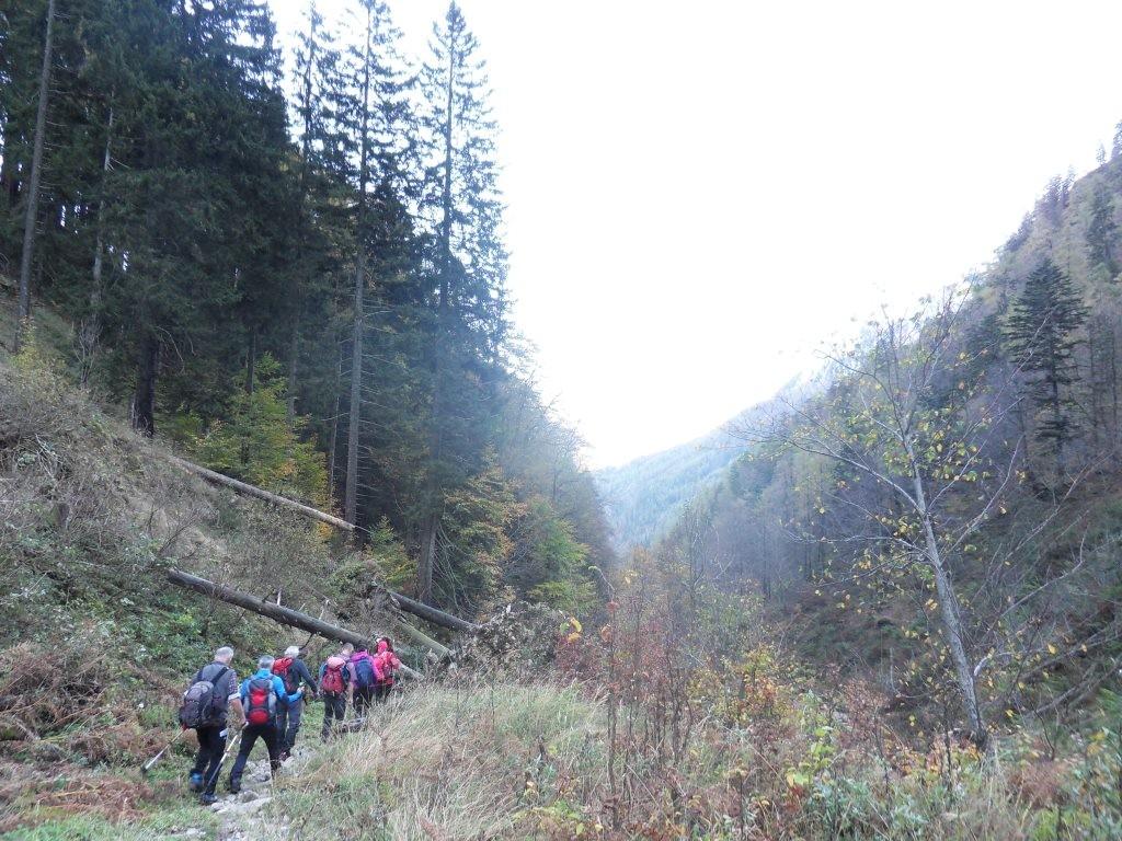 Abstieg Richtung Blumaueralm