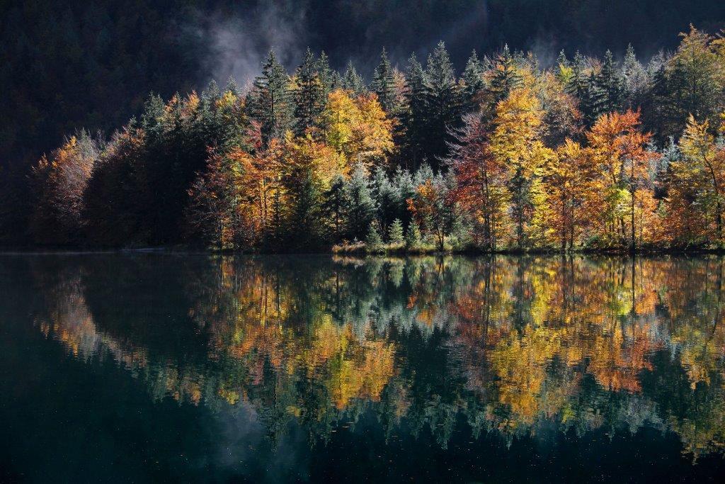 """""""Goldener Herbst"""" von Josef Rath"""