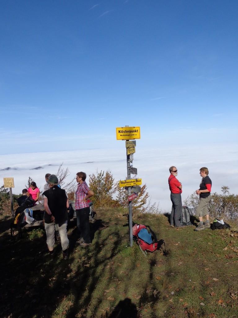 Muckenkogel-Gipfel 1.248 m