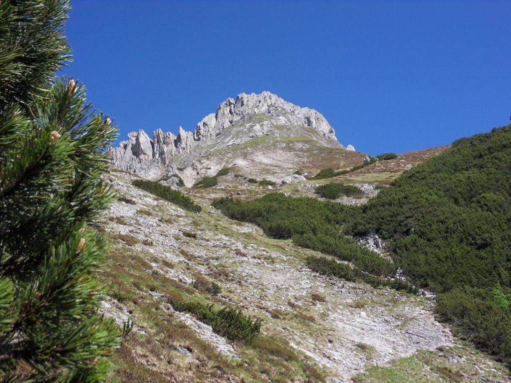 erster Blick auf die Kammspitze