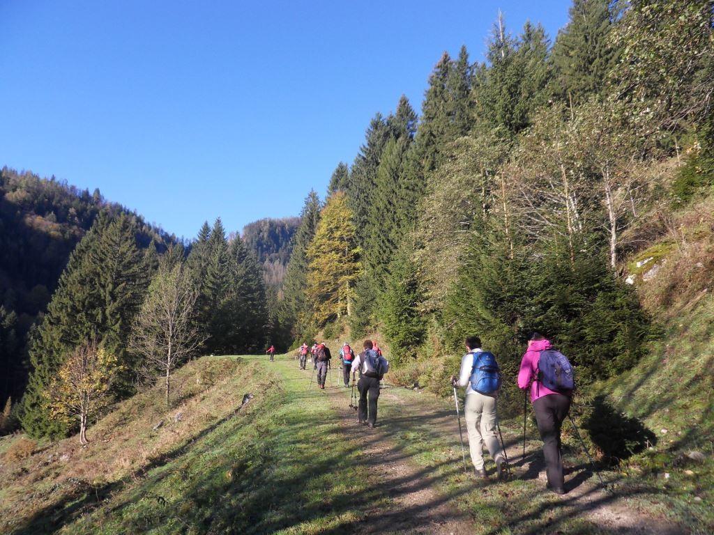 Aufstieg Richtung Zaglbaueralm