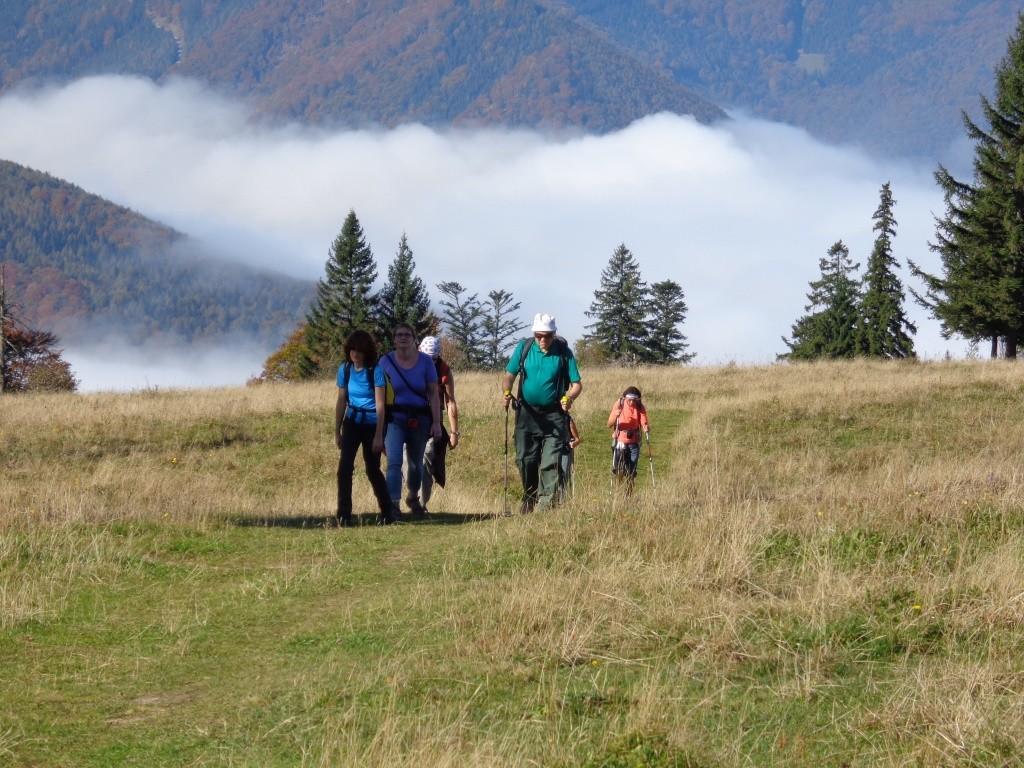 Aufstieg Richtung Muckenkogel