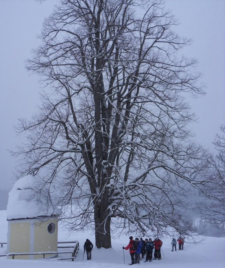 Ochsenwaldkapelle