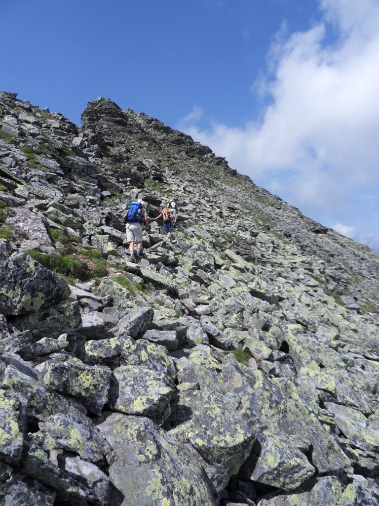 Aufstieg zum Grieskogel 2.338 m