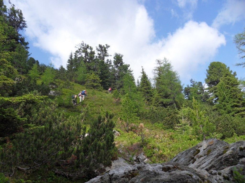 Aufstieg vom Liesinggraben