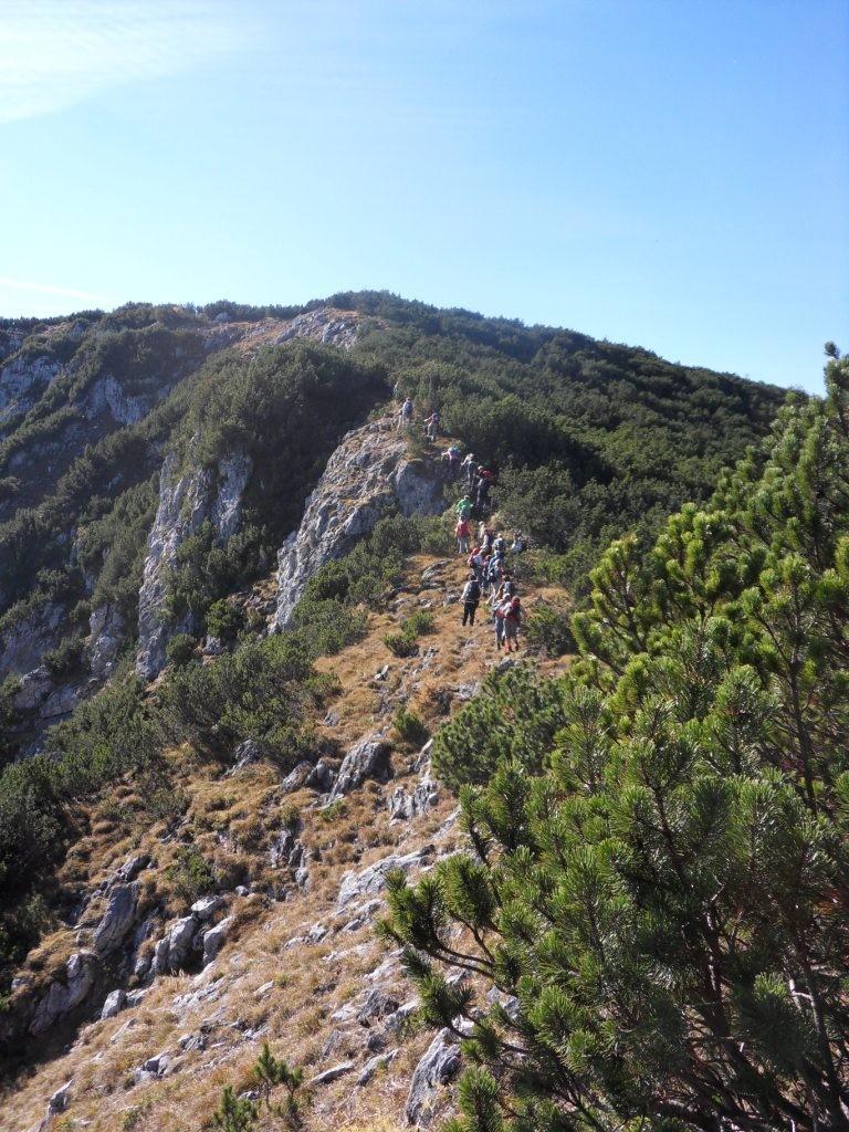 Übergang zum Mayrwipfl