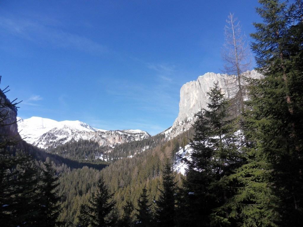 Blick auf den Stubwieswipfel 1.786 m
