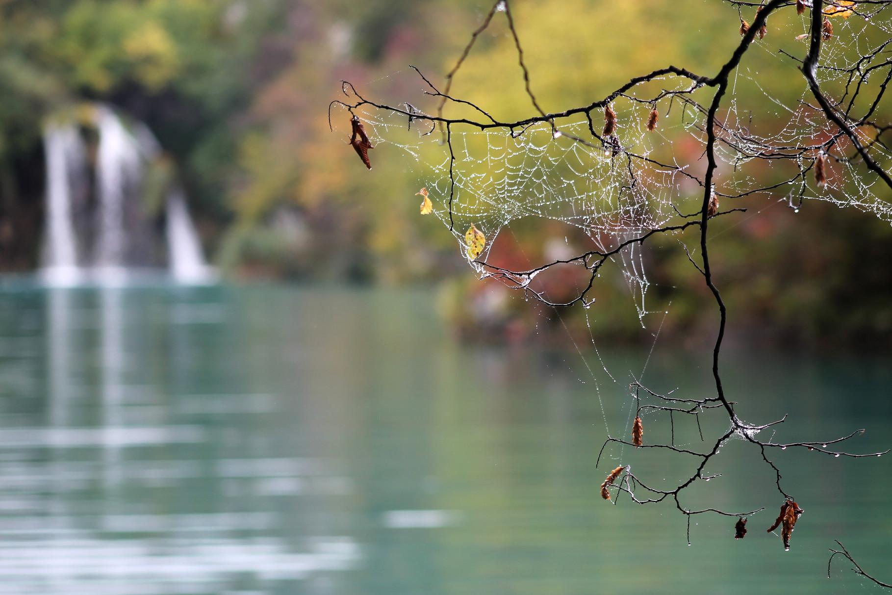 """""""Plitvicer Seen 1"""" v. Ulli Kolmhofer  4.)EW.,  19 Pkt."""