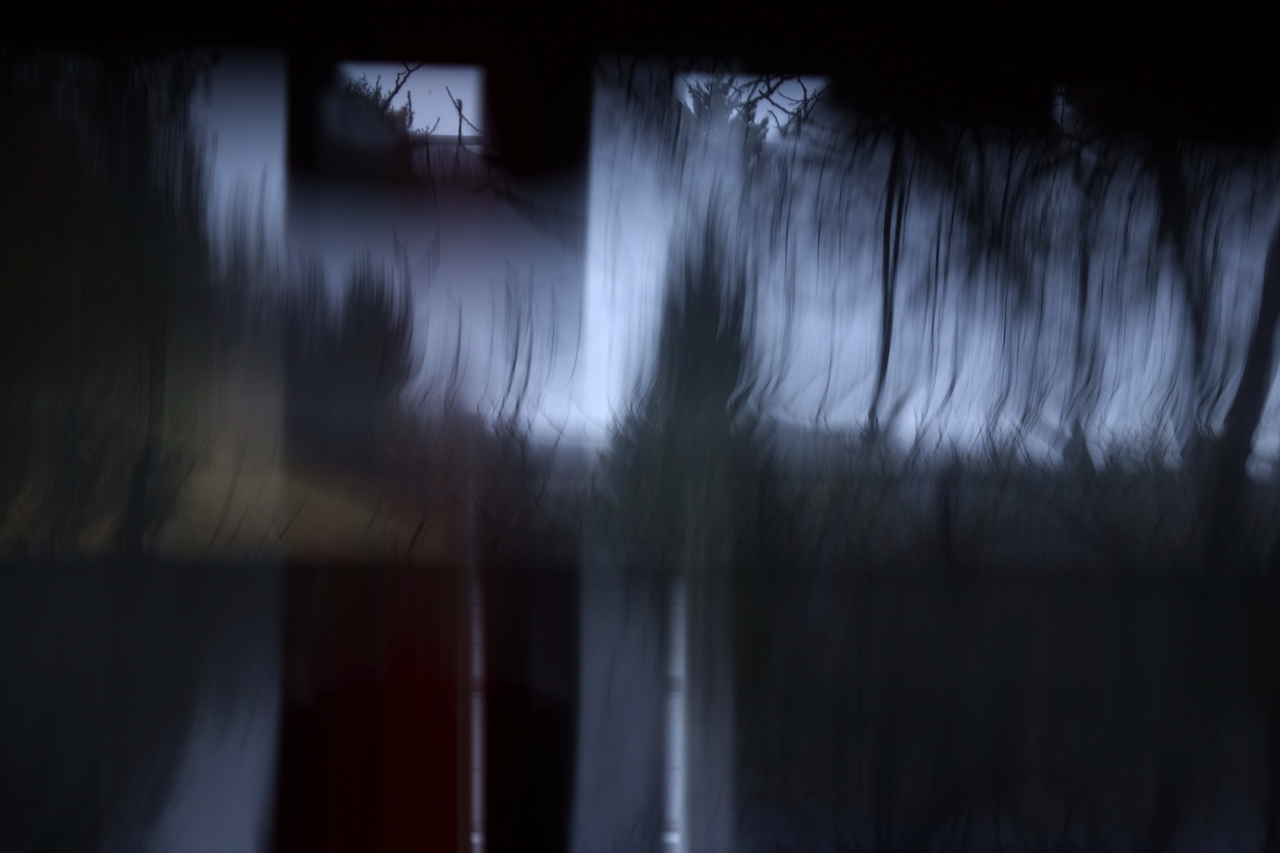 Swamp 3 © Karl A. Herrmann. Photographic print under glass / acrylic glass. Prices and editions on request.