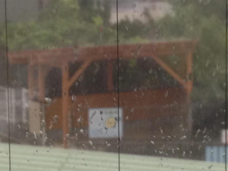 屋根があるから突然の雨でも自転車はぬれません。