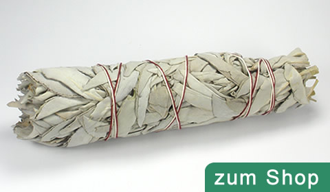 Weisser Salbei kaufen in der Schweiz