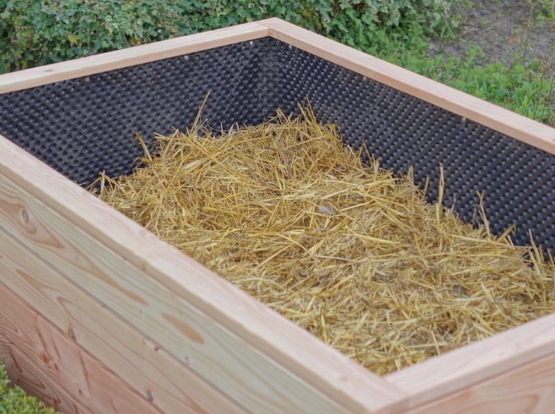 Hochbeet Befüllung - 3. Verrotteter Stallmist, Dung oder grober Kompost