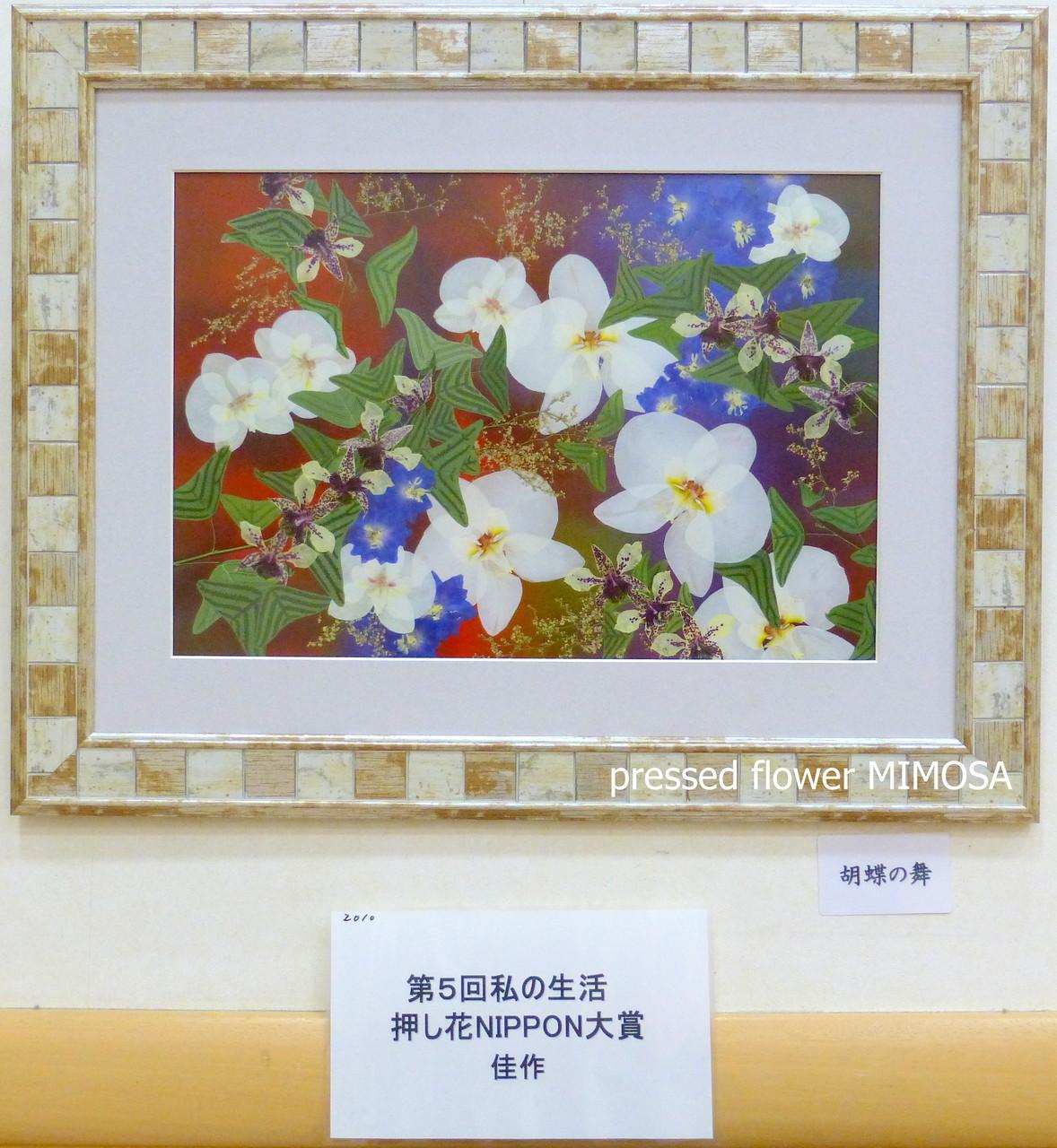 「胡蝶の舞」 私の生活押し花NIPPON大賞 佳作 花材:胡蝶蘭