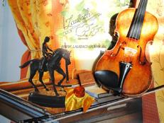 Accessoires  für Violinen, Bratschen und Celli   Laubach