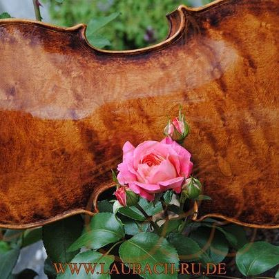 Meistervioline aus dem Italienischen Familien Amati, Guarneri, (Antonio) Stradivari, und Ruggeri
