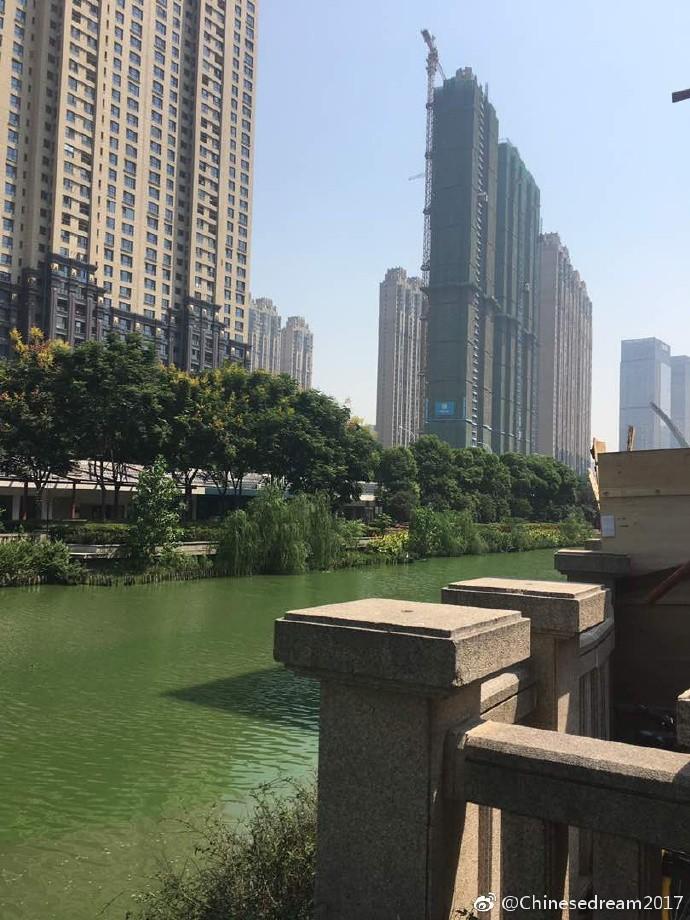 Schönes grünes Wasser