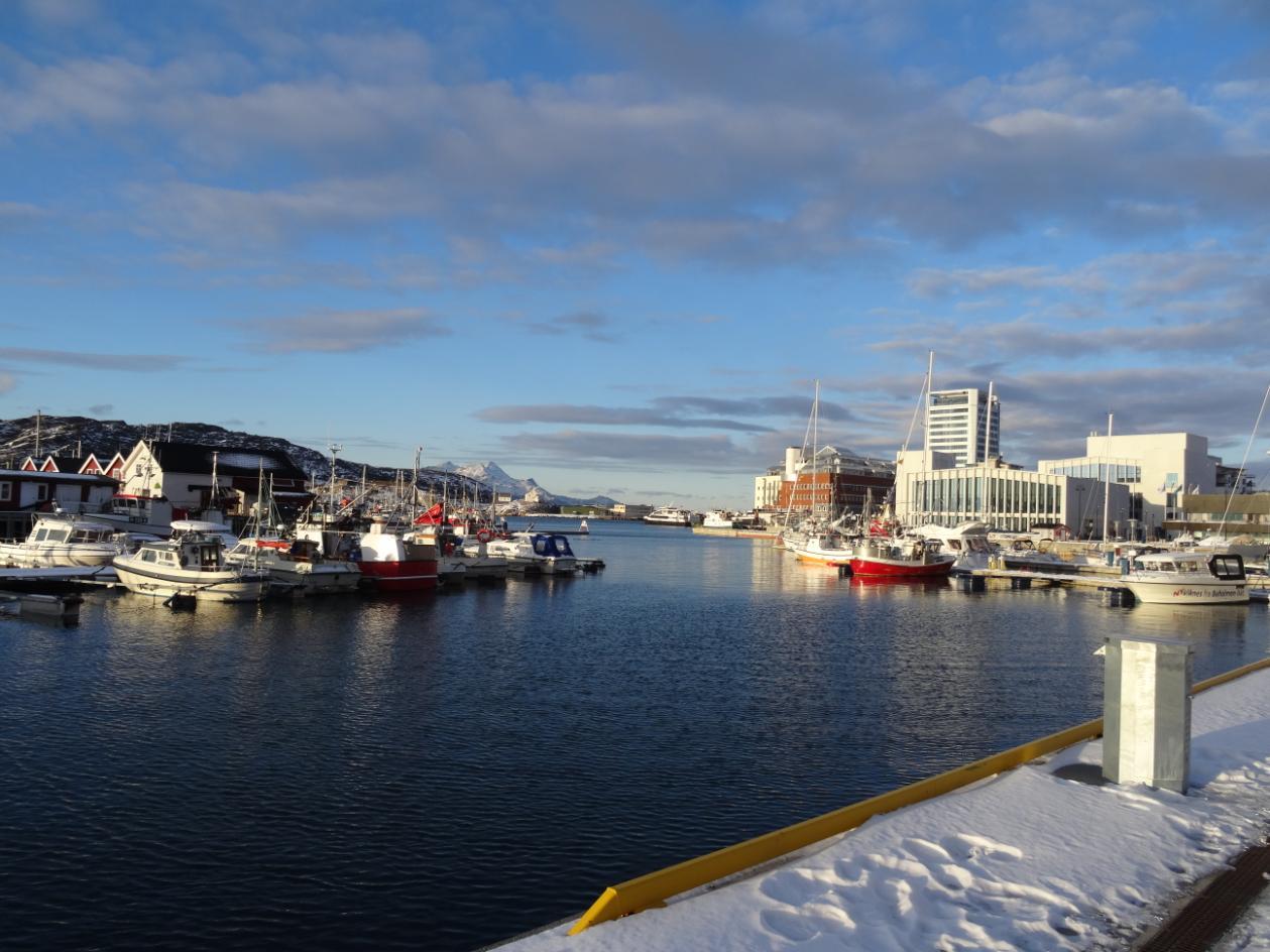 Der Hafen mit Blick auf die Bibliothek