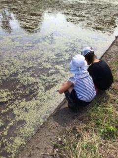 カエルやら草で遊んでいた二人