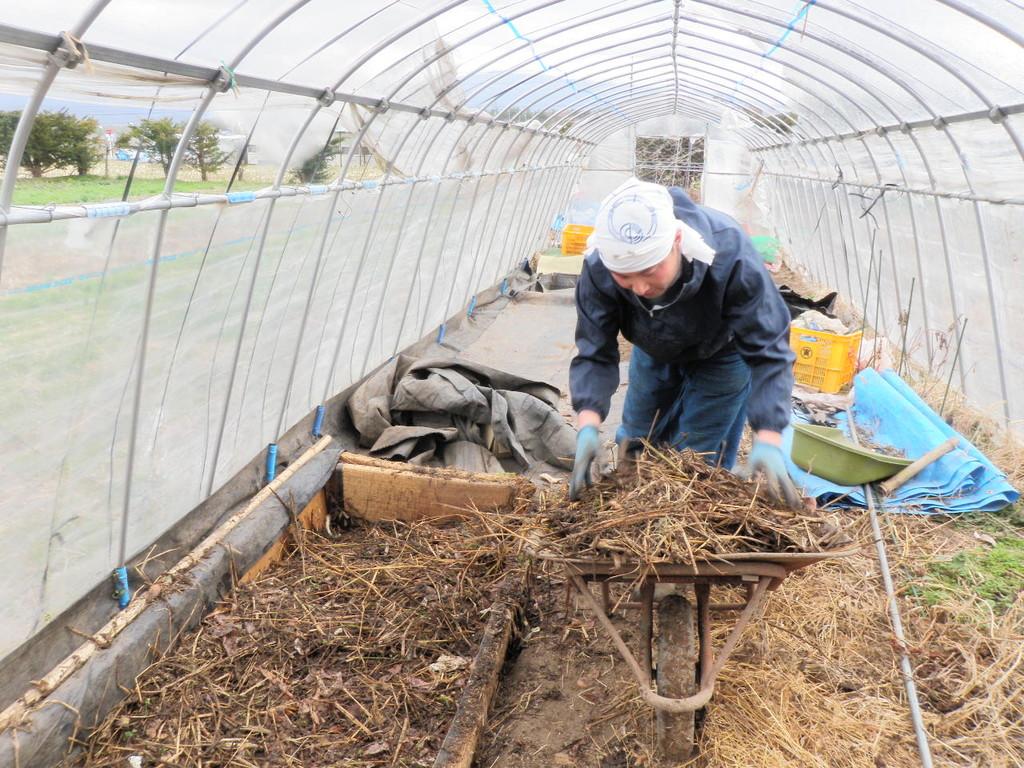 踏み込み温床作り(発酵有機物を運ぶ)