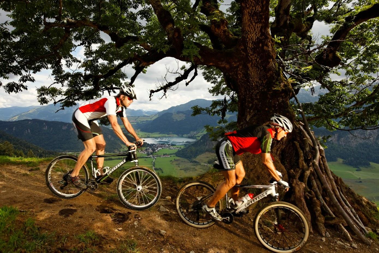 Zwei Mountainbike-Fahrer beim Hinunterfahren