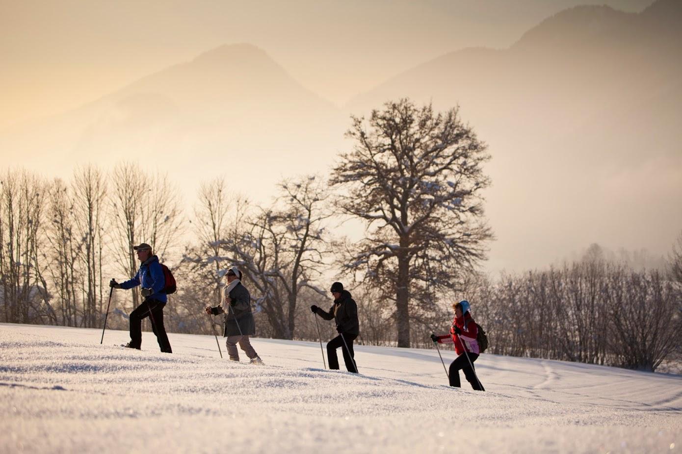 4 Personen beim Winterwandern