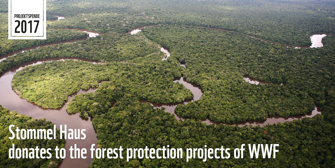WWF Forest Protection Projects - Supported by Stommel Haus UK ...