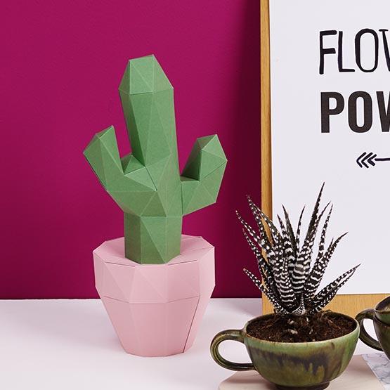 Kaktus Beispielsbild Papershape