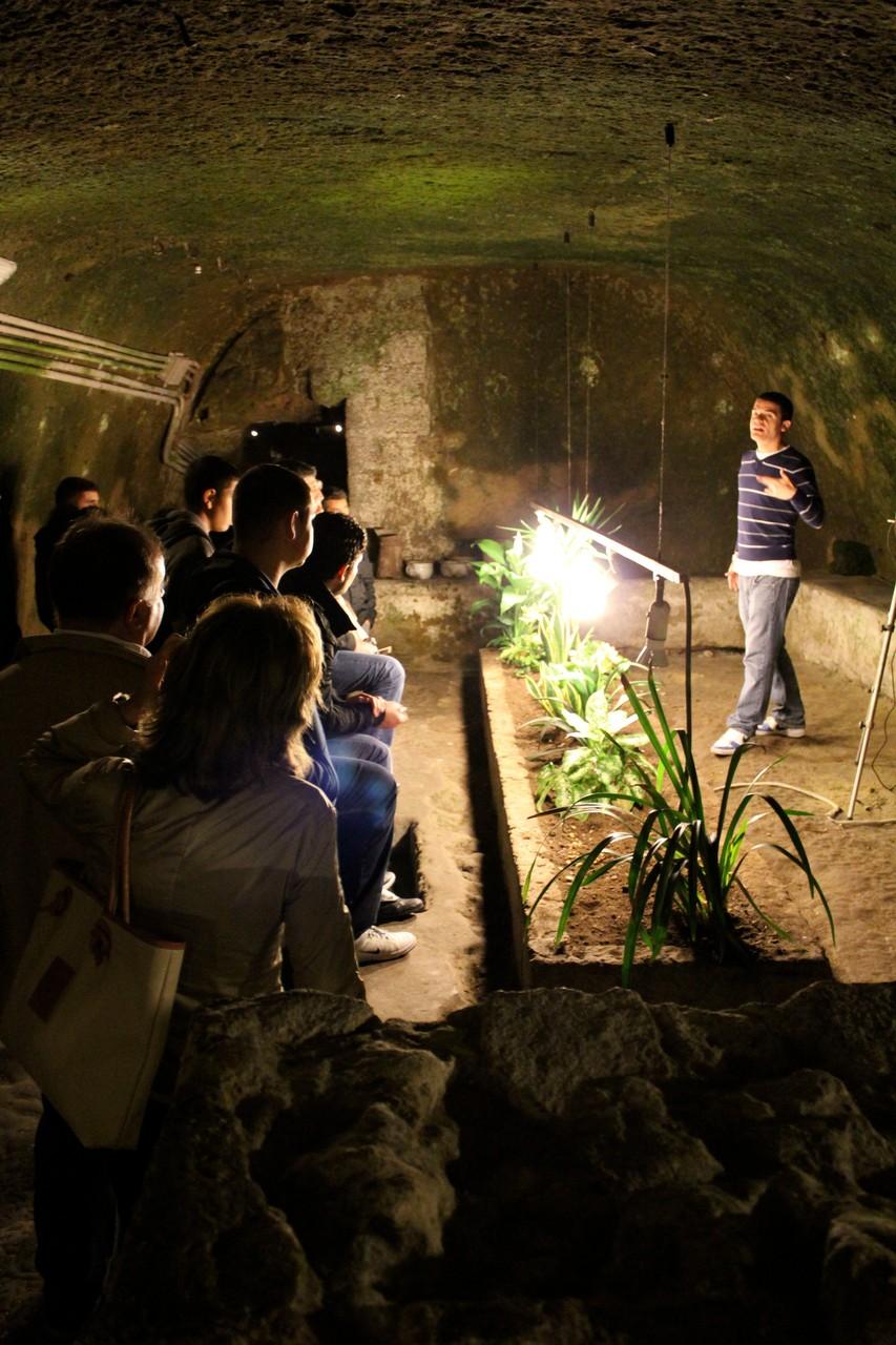 Pflanzenexperiment unter der Erde.