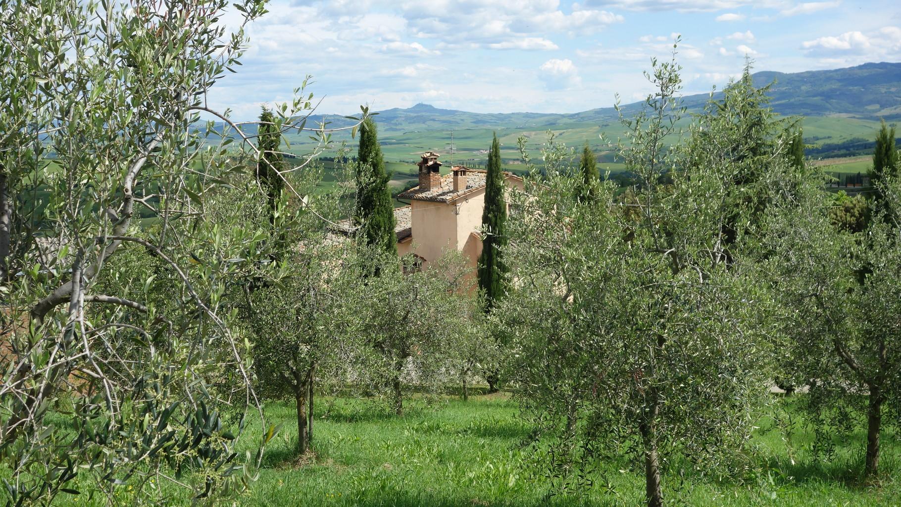 Toskana pur - alte Gemäuer, Zypressen und Olivenbäume