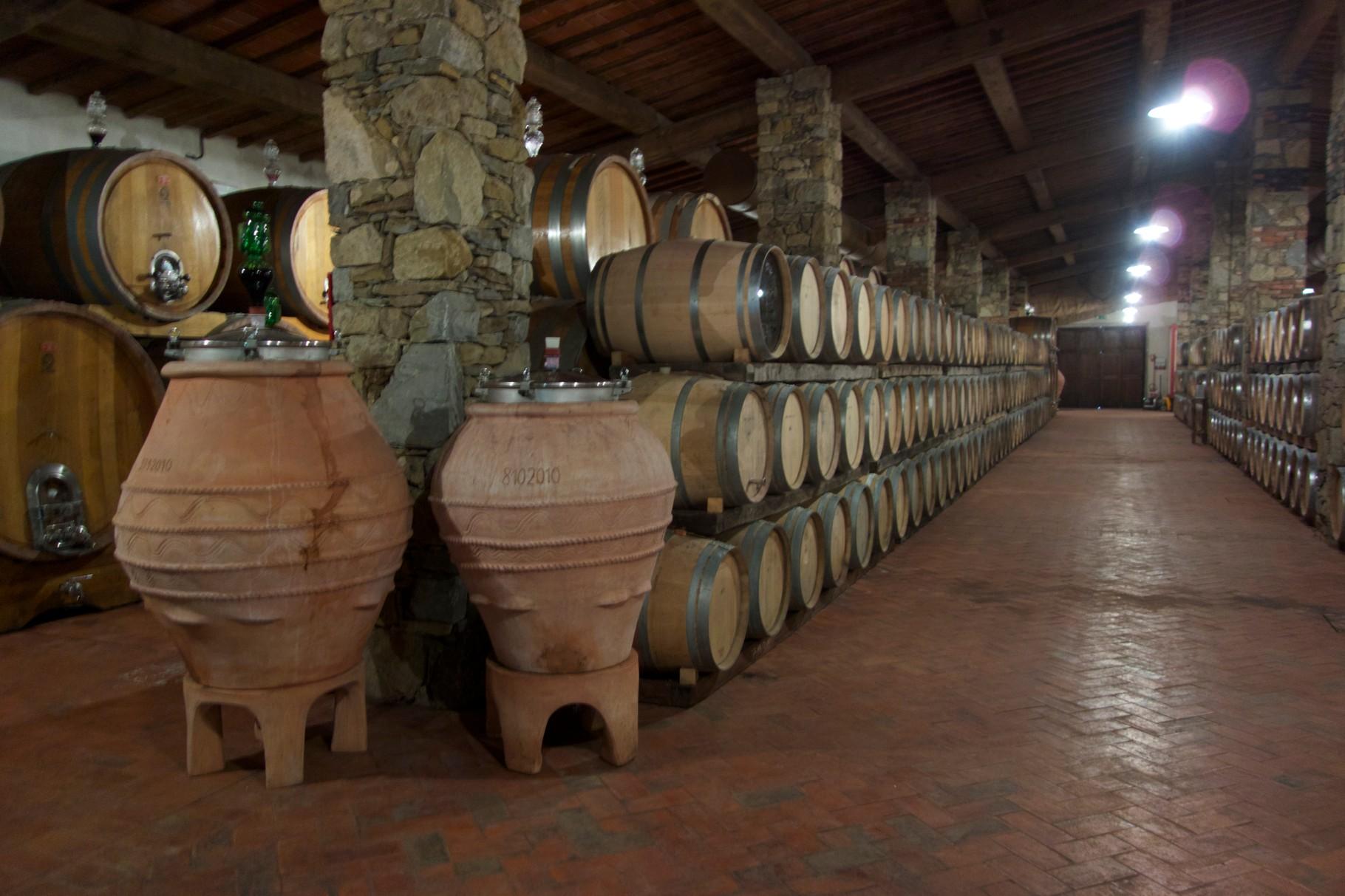 In früheren Zeiten gärte der Wein in Terrakotta-Gefäßen, wieder entdeckt auf der Fattoria La Vialla