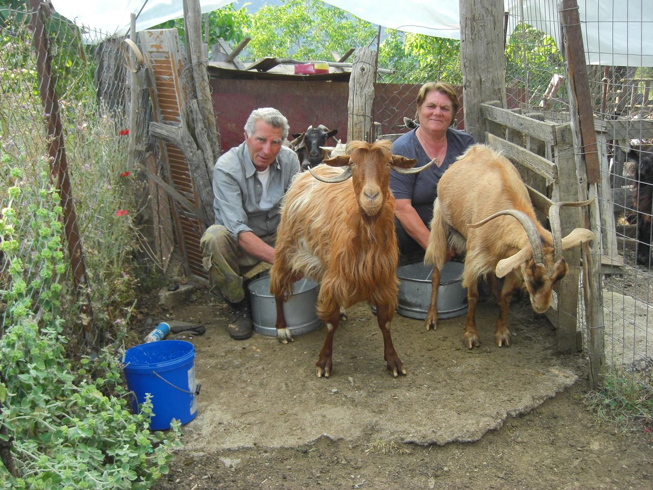 Ilias und seine Frau beim Melken