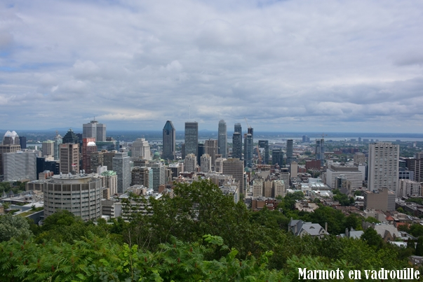 Vue du Mont Royal