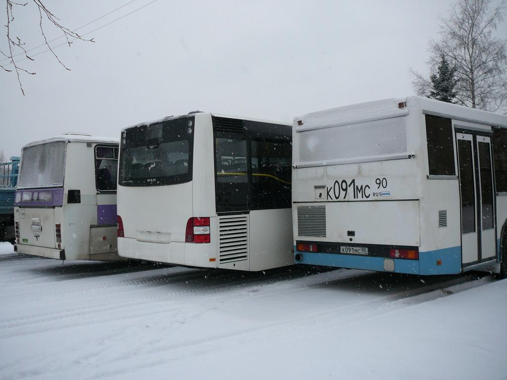Автобусы разных поколений, разных производителей, разного назначения, зато на всей троице применена компоновка с центральным расположением двигателя в корме