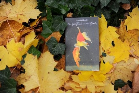 Lars Gebhardt - Ein Goldfisch in der Grube - Herbstlektüre