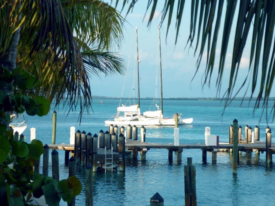 Pegasus in der Karibik