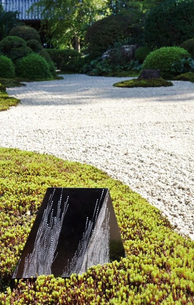 Coral Spawning Zen 2014