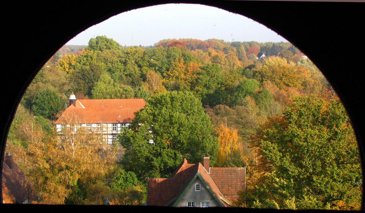 Blick vom Kirchturm (© Claus Lampe)