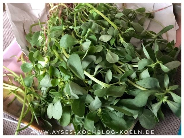 Rezept tuerkischer Salat Portukal l Portulak Salat mit Joghurt
