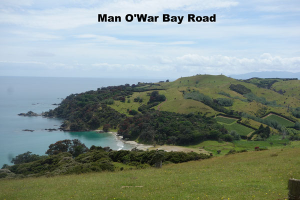 Man O'War Bay Road Waiheke Island