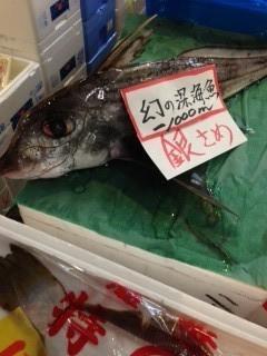 幻の銀サメ